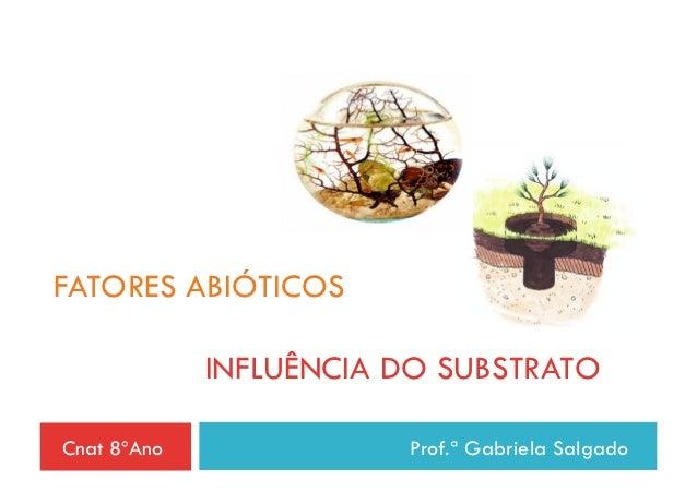 FATORES ABIÓTICOS             INFLUÊNCIA DO SUBSTRATOCnat 8ºAno              Prof.ª Gabriela Salgado
