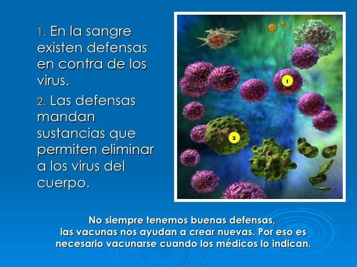 1. En la sangre existen defensas en contra de los virus. 2. Las defensas mandan sustancias que permiten eliminar a los vir...