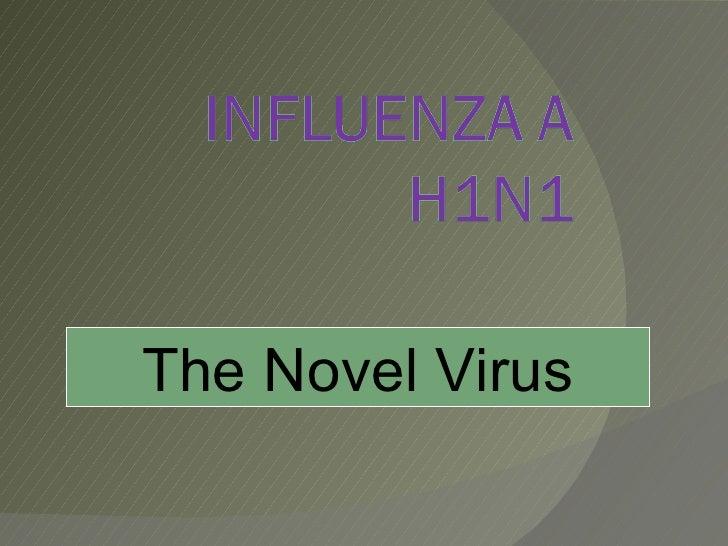 The Novel Virus