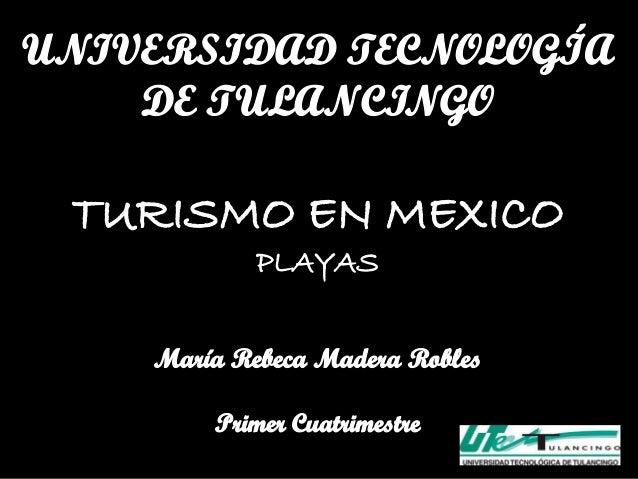 El Municipio de Benito Juárez, mejor     conocido como Cancún, es uno de losdesarrollos turísticos más importantes del mun...