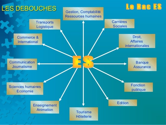 LES DEBOUCHES                 Gestion, Comptabilité                              Ressources humaines                 Trans...