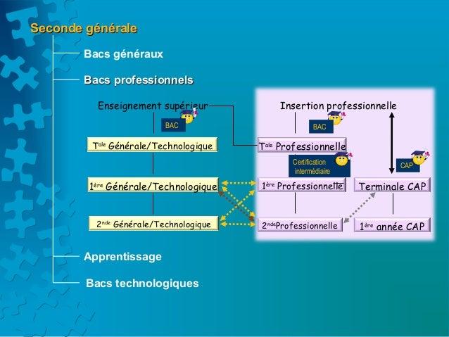 Seconde générale       Bacs généraux       Bacs professionnels          Enseignement supérieur            Insertion profes...