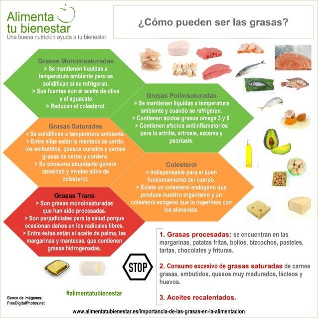 Infografía Tipos de grasas en la alimentación
