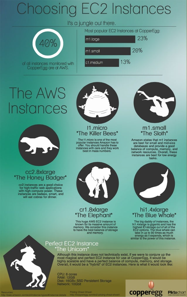 Infographic - Choosing EC2 Instances: Honey Badger or Sloth?