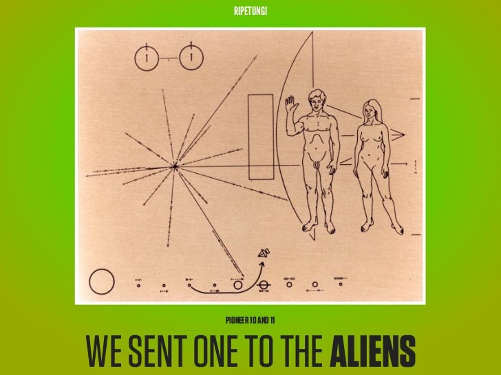 RIPETUNGI          PIONEER 10 AND 11WE SENT ONE TO THE ALIENS