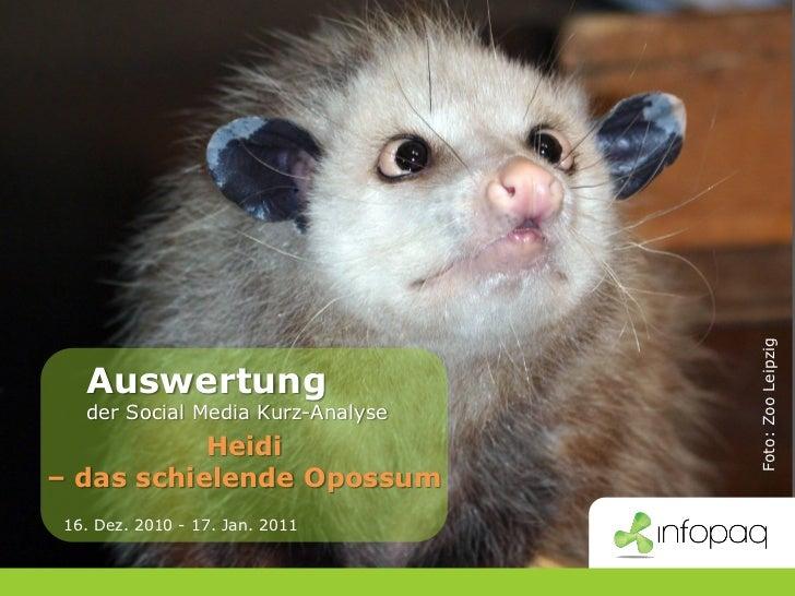 Foto: Zoo Leipzig           Auswertung           der Social Media Kurz-Analyse               Heidi    – das schielende Opo...