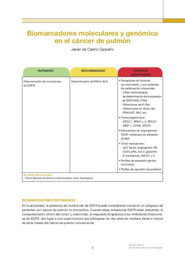Biomarcadores moleculares y genómica en el cáncer de pulmón Javier de Castro Carpeño  RECOMENDABLE  RUTINARIO  Determinaci...