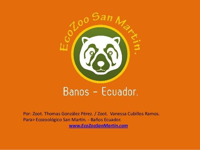 Por: Zoot. Thomas González Pérez. / Zoot. Vanessa Cubillos Ramos. Para> Ecozoológico San Martín. - Baños Ecuador. www.EcoZ...
