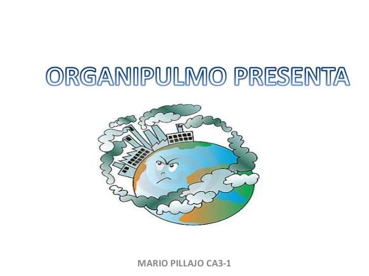ORGANIPULMO PRESENTA<br />MARIO PILLAJO CA3-1<br />