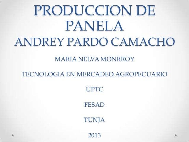 PRODUCCION DE PANELA ANDREY PARDO CAMACHO MARIA NELVA MONRROY TECNOLOGIA EN MERCADEO AGROPECUARIO UPTC FESAD  TUNJA 2013