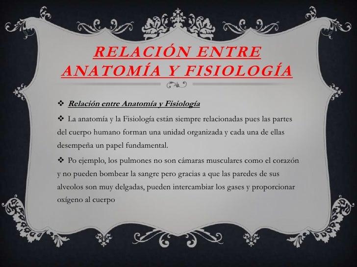Famoso Cuál Es La Relación Entre La Anatomía Y Fisiología Humana ...