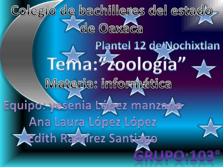 """Colegio de bachilleres del estado de Oaxaca<br />Plantel 12 de Nochixtlan<br />Tema:""""zoología""""<br />Materia: informática<b..."""
