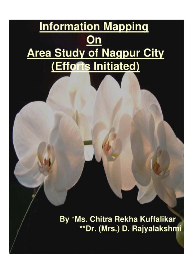 Information Mapping On Area Study of Nagpur City: (Efforts Initiated)