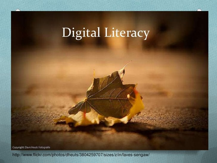 Digital Literacy                The ability to use digital technology,                communication tools or networks to  ...
