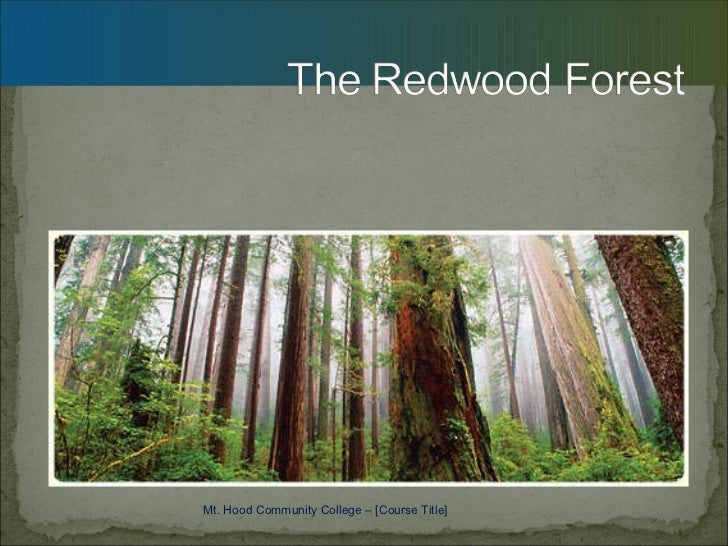 Mt. Hood Community College – [Course Title]