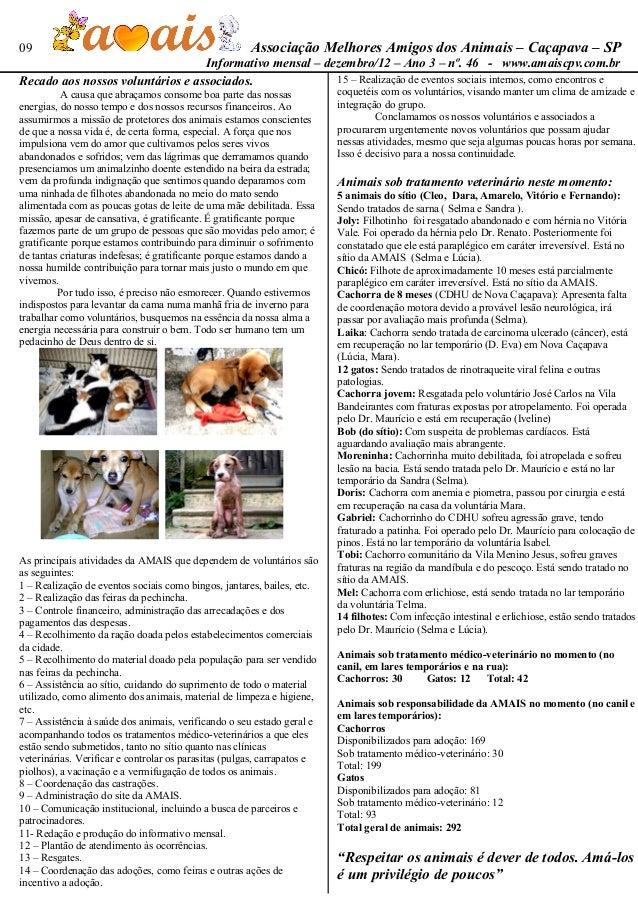 09                                                    Associação Melhores Amigos dos Animais – Caçapava – SP              ...