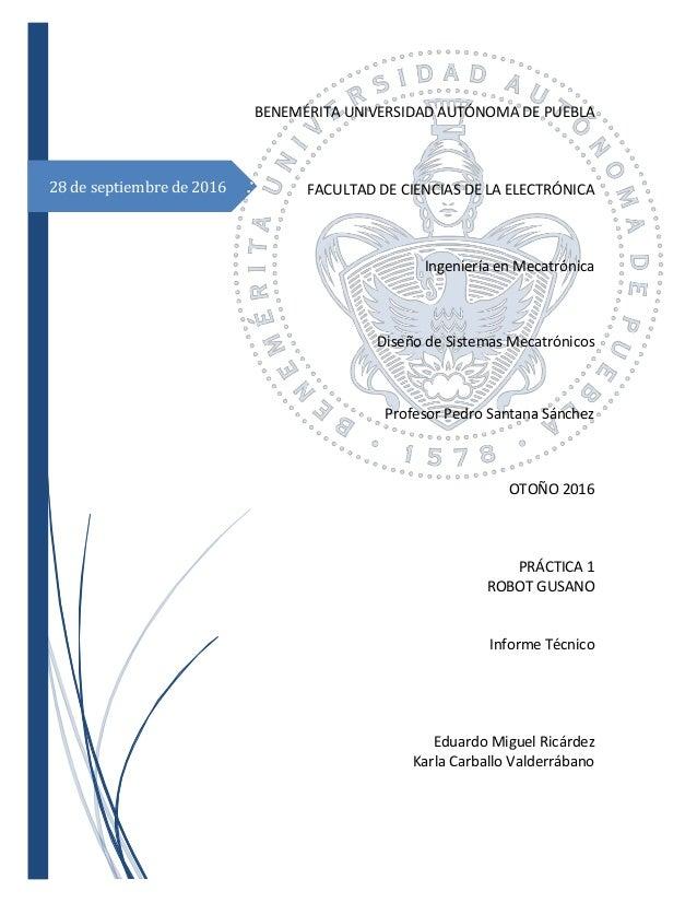 Informe Técnico de un Sistema Mecatrónico (Robot Gusano)