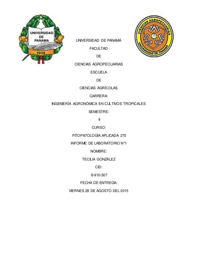 UNIVERSIDAD DE PANAMÁ FACULTAD DE CIENCIAS AGROPECUARIAS ESCUELA DE CIENCIAS AGRÍCOLAS CARRERA: INGENIERÍA AGRONÓMICA EN C...