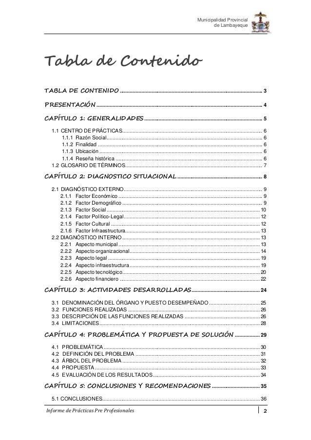informe de pr cticas pre profesionales