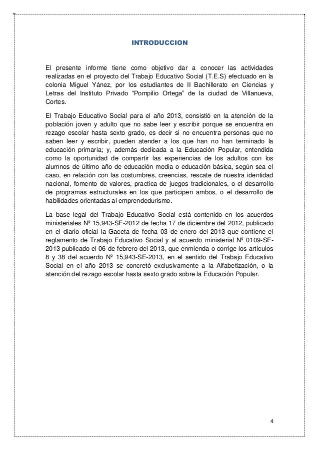 Informe Final del Trabajo Educativo Social. T.E.S - 2013