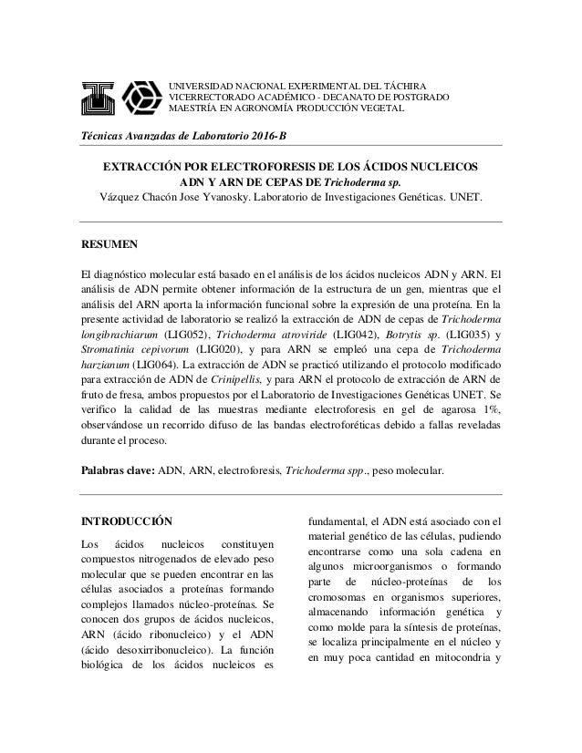 UNIVERSIDAD NACIONAL EXPERIMENTAL DEL TÁCHIRA VICERRECTORADO ACADÉMICO - DECANATO DE POSTGRADO MAESTRÍA EN AGRONOMÍA PRODU...