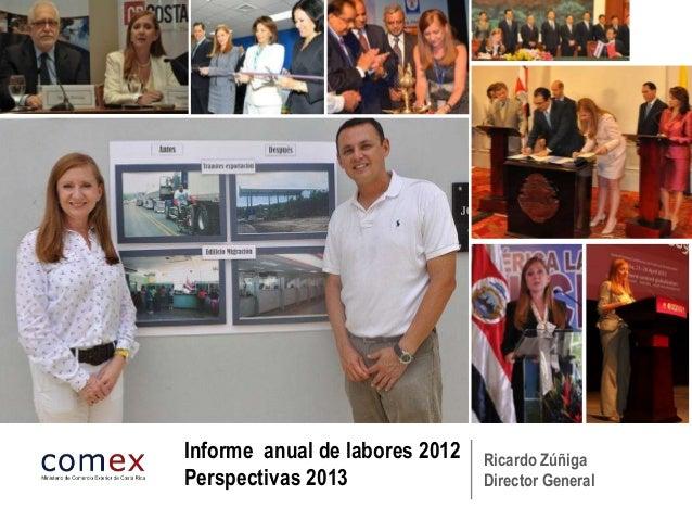 Informe anual de labores 2012   Ricardo ZúñigaPerspectivas 2013               Director General