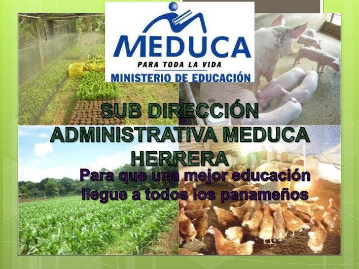 INFORME DE COORDINACIÓN DE     FONDO AGROPECUARIO 2011   Durante el año, se le ha dado seguimiento a todos los    proyect...
