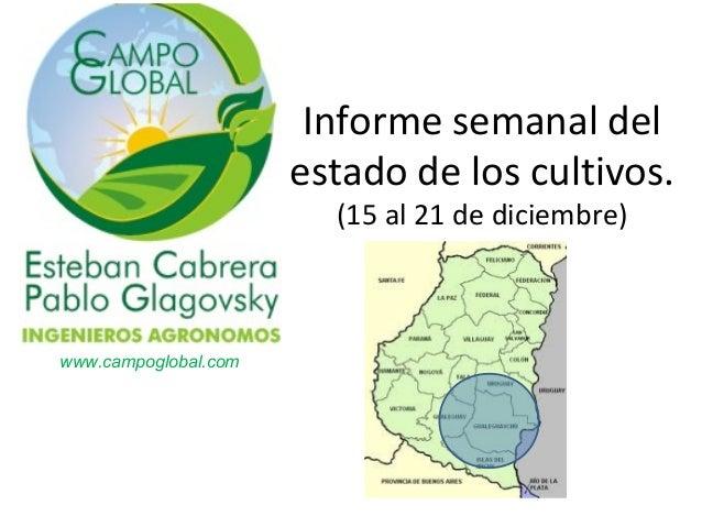 Informe semanal del estado de los cultivos. (15 al 21 de diciembre)  www.campoglobal.com