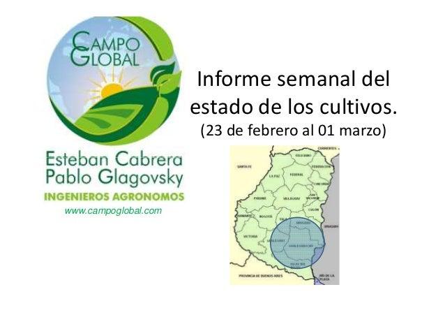 Informe semanal del estado de los cultivos. (23 de febrero al 01 marzo)  www.campoglobal.com