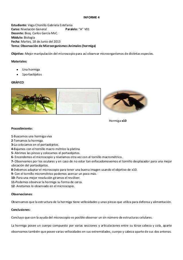 Informe De Biologia 1 2 3 4 5