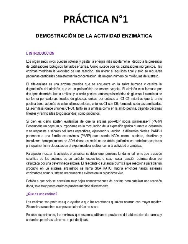 Informe de bioquimica 1 (1) Slide 2