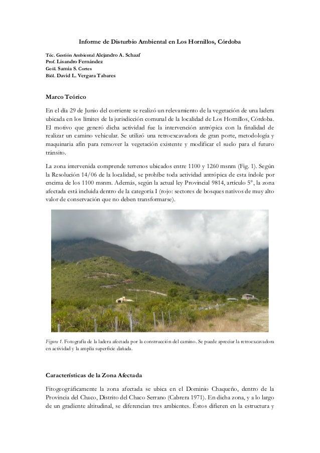 Informe de Disturbio Ambiental en Los Hornillos, CórdobaTéc. Gestión Ambiental Alejandro A. SchaafProf. Lisandro Fernández...