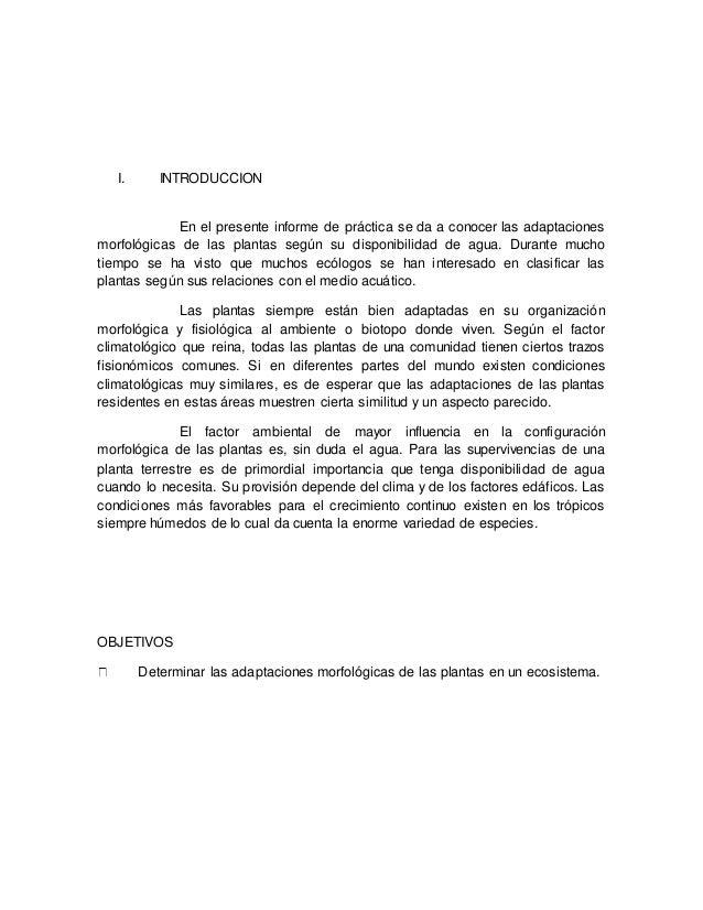 ADAPTACIONES MORFOLOGICAS DE LAS PLANTAS