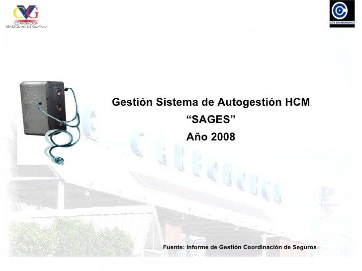 """Gestión Sistema de Autogestión HCM                """"SAGES""""                Año 2008             Fuente: Informe de Gestión C..."""