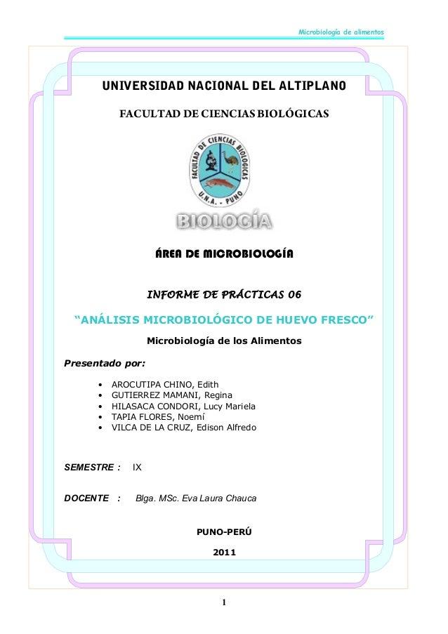 Microbiología de alimentos  UNIVERSIDAD NACIONAL DEL ALTIPLANO FACULTAD DE CIENCIAS BIOLÓGICAS  ÁREA DE MICROBIOLOGÍA INFO...