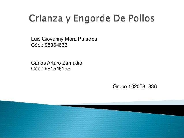 Luis Giovanny Mora Palacios Cód.: 98364633  Carlos Arturo Zamudio Cód.: 981546195  Grupo 102058_336