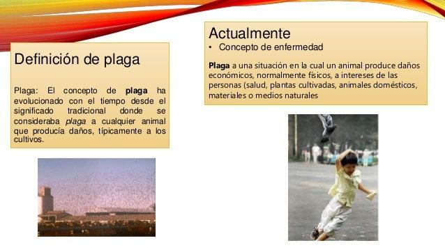 PLAGA DEFINICION PDF DOWNLOAD