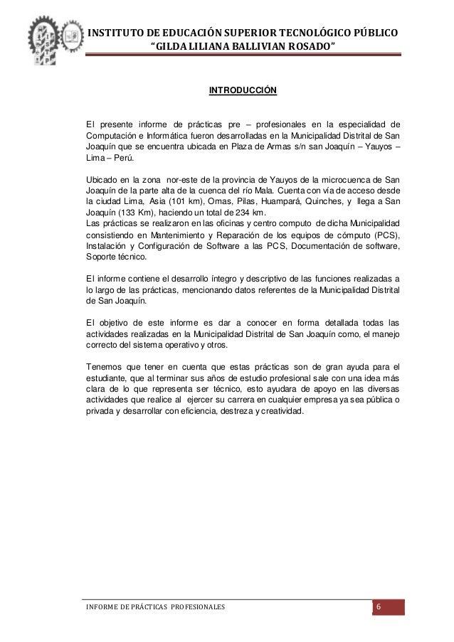 Informe De Pr 193 Cticas Pre Profesionales Instituto De