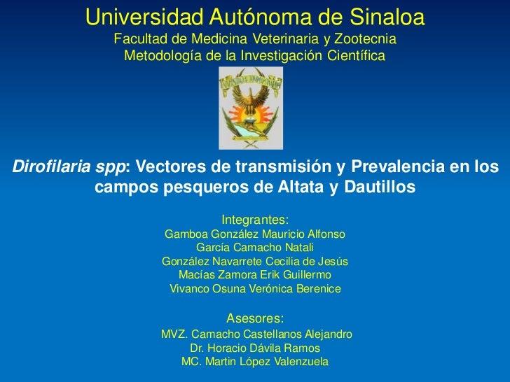 Universidad Autónoma de Sinaloa            Facultad de Medicina Veterinaria y Zootecnia             Metodología de la Inve...