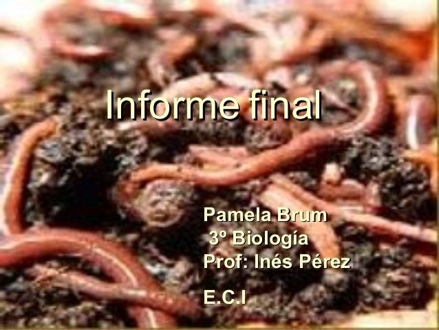 InformeInforme finalfinal Pamela BrumPamela Brum 3º Biología3º Biología Prof: Inés PérezProf: Inés Pérez E.C.I