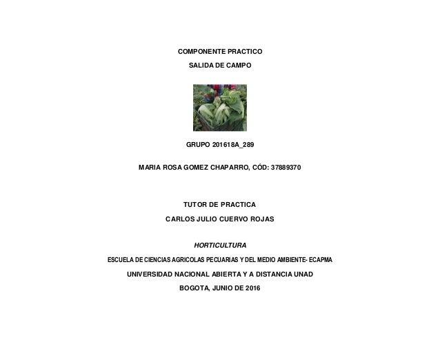 COMPONENTE PRACTICO SALIDA DE CAMPO GRUPO 201618A_289 MARIA ROSA GOMEZ CHAPARRO, CÓD: 37889370 TUTOR DE PRACTICA CARLOS JU...
