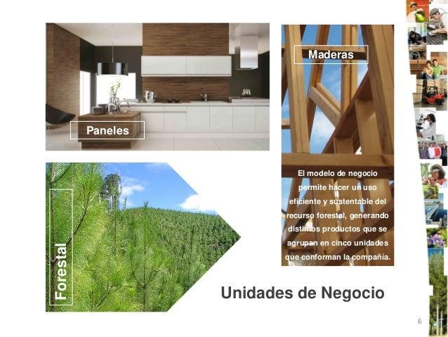 Maderas           Paneles                               El modelo de negocio                               permite hacer u...