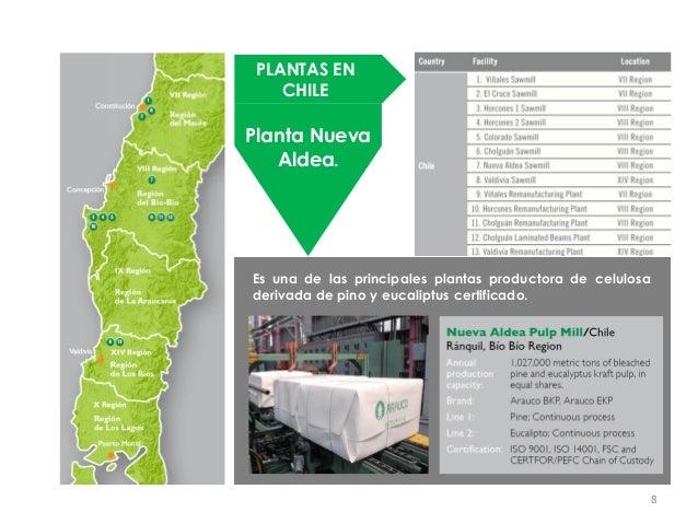 PLANTAS EN    CHILEPlanta Nueva   Aldea.Es una de las principales plantas productora de celulosaderivada de pino y eucalip...