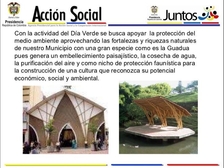 Informe primer dia verde 2010 chachagui for Importancia economica ecologica y ambiental de los viveros forestales
