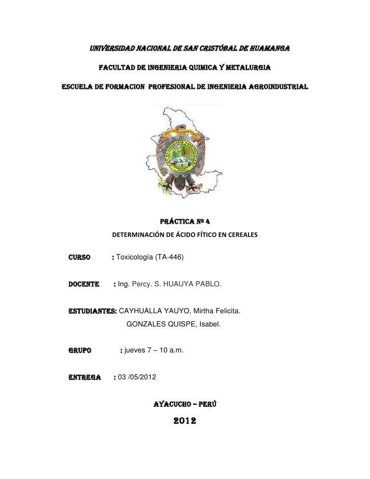 UNIVERSIDAD NACIONAL DE SAN CRISTÓBAL DE HUAMANGA         FACULTAD DE INGENIERIA QUIMICA Y METALURGIAESCUELA DE FORMACION ...