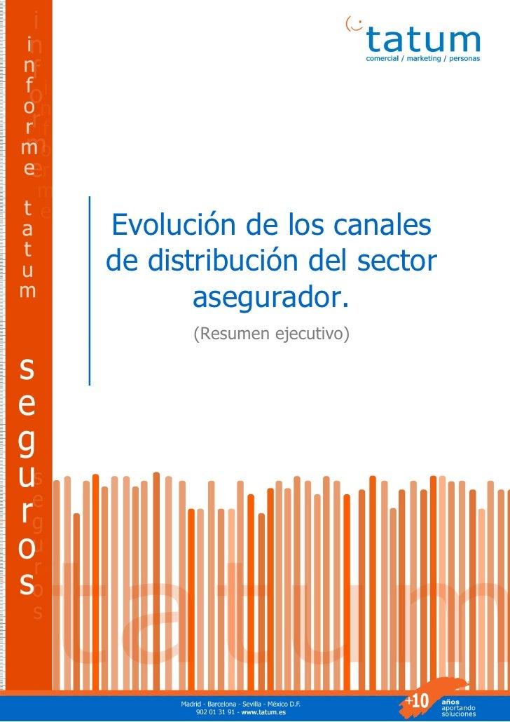 Evolución General de los Canales de Distribución                                           (Resumen ejecutivo)          Ev...