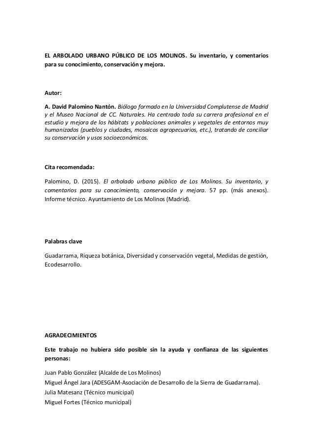 Vistoso Plantilla De Formato De Informe Técnico Modelo - Colección ...