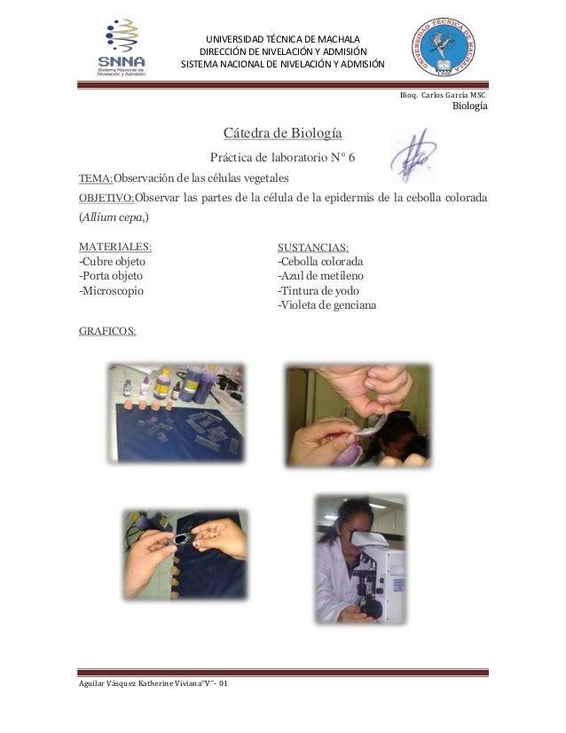 UNIVERSIDAD TÉCNICA DE MACHALA DIRECCIÓN DE NIVELACIÓN Y ADMISIÓN SISTEMA NACIONAL DE NIVELACIÓN Y ADMISIÓN Bioq. Carlos G...
