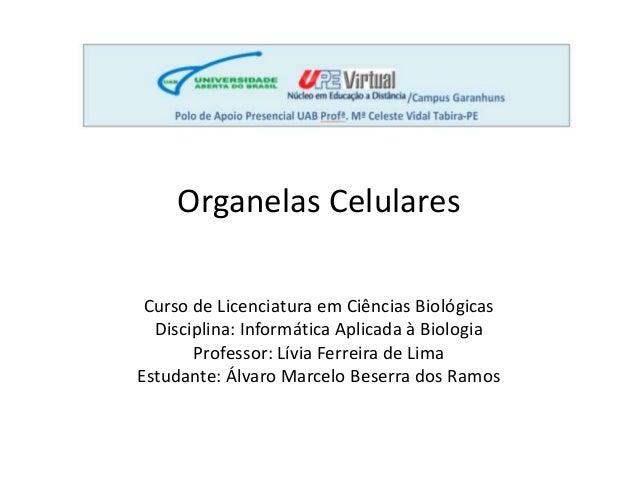 Organelas Celulares  Curso de Licenciatura em Ciências Biológicas  Disciplina: Informática Aplicada à Biologia  Professor:...