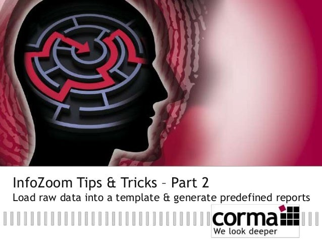 InfoZoom Tips & Tricks – Part 2 Load raw data into a template & generate predefined reports